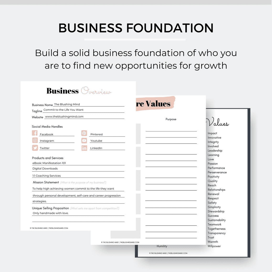 blush business plan template